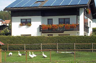 Hausansicht im Sommer - Ferienwohnung in Haidmühle